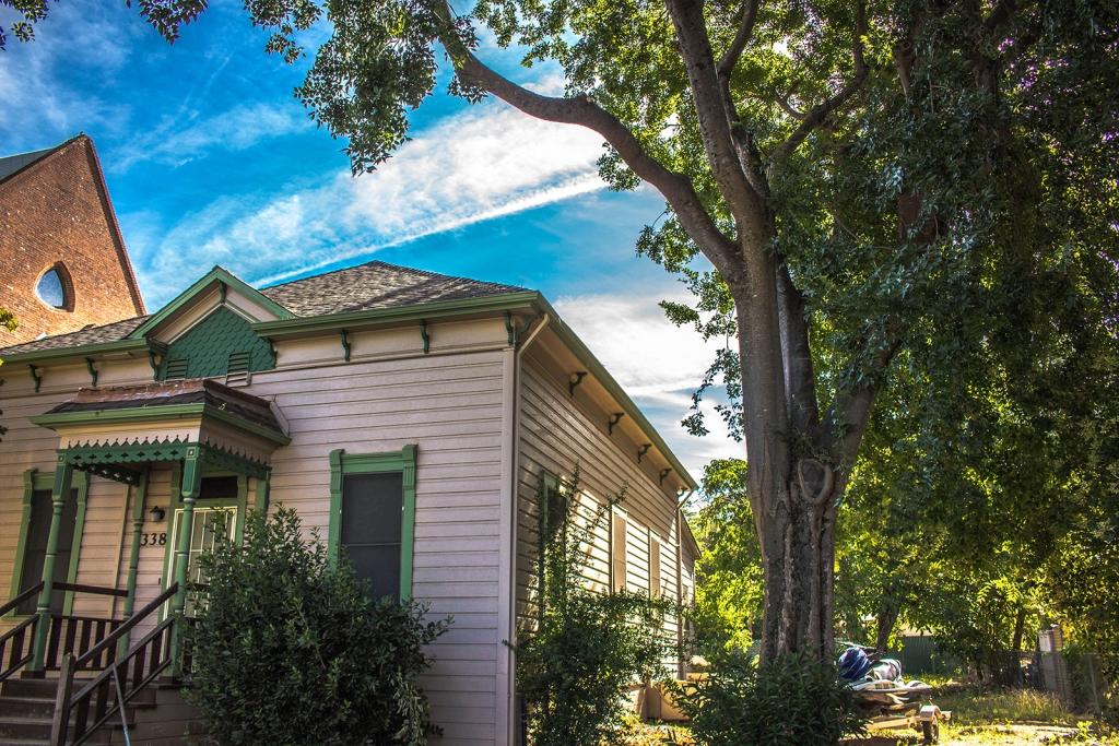 Tree Removal Arborist El Dorado Hills - Oak Tree Trimming - After