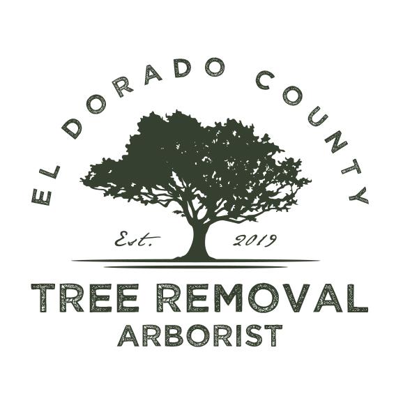 Tree Removal Arborist Folsom, El Dorado Hills, Roseville, Sacramento