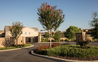 Residential Tree Maintenance Care - El Dorado Hills
